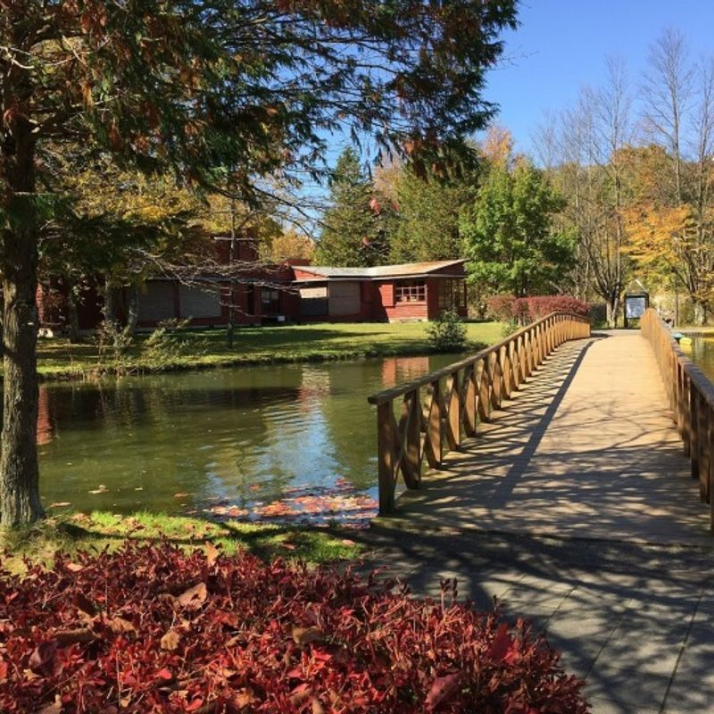 Tokyo to Karuizawa: The cost of getting there and around photo