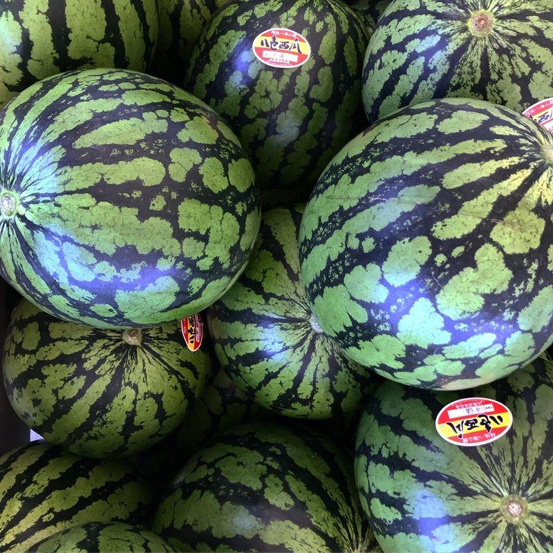 The Yairo Watermelon Festival photo