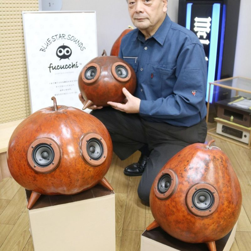 Speaker made from vegetable in Japan hitting the right notes for listeners photo