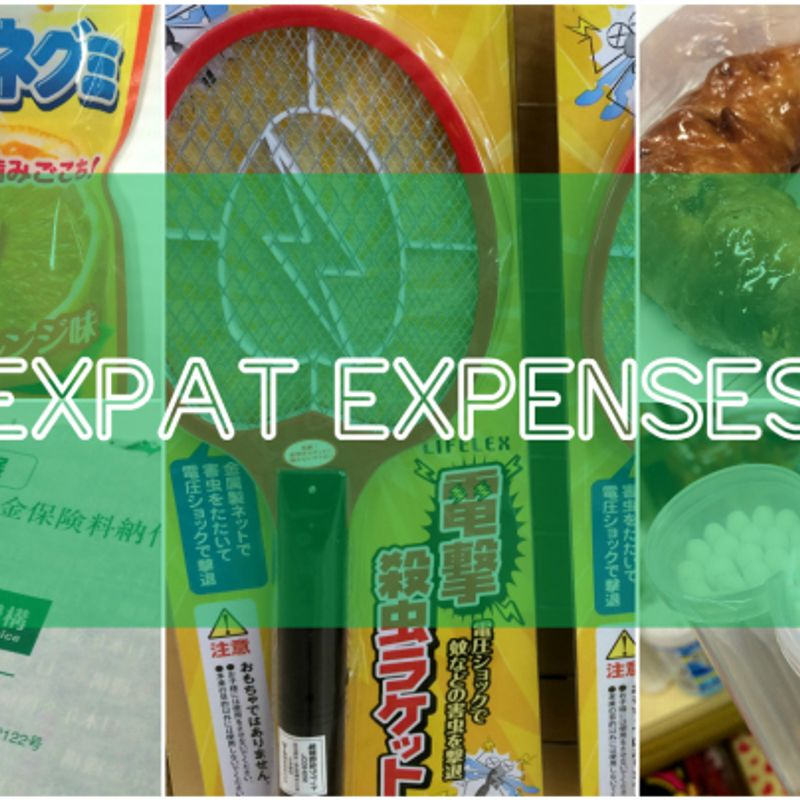 How Much?!  Weekly Expense in Japan (April 2 - 8) photo