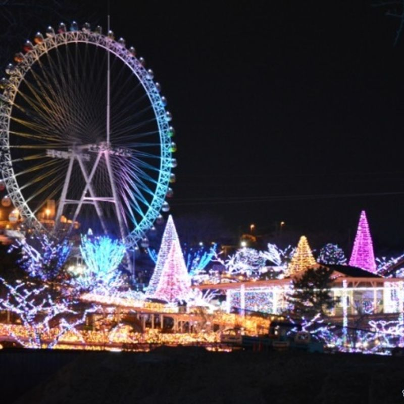 My little Christmas in Japan photo