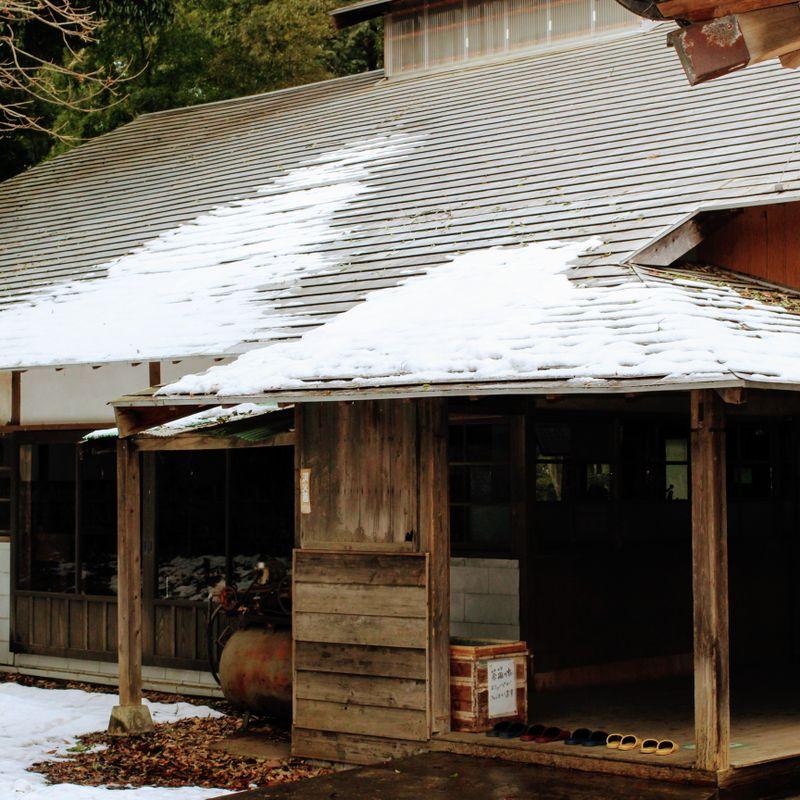 あなたの隣人トトロとレトロな緑茶工場! photo
