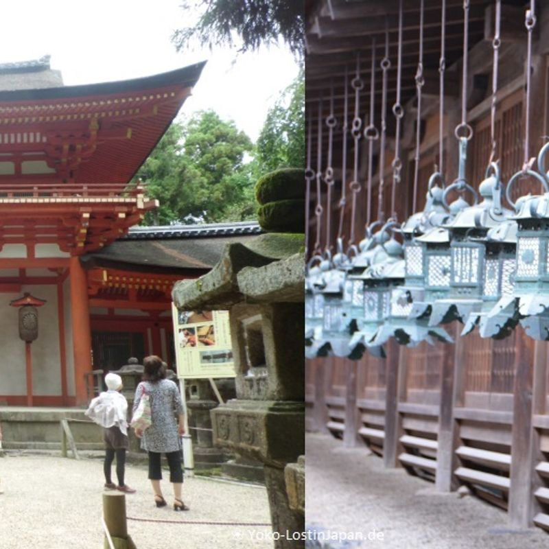 The five best things to do in Nara photo