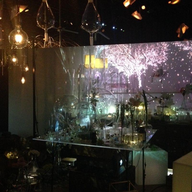 Indoor Hanami event in Nihonbashi photo