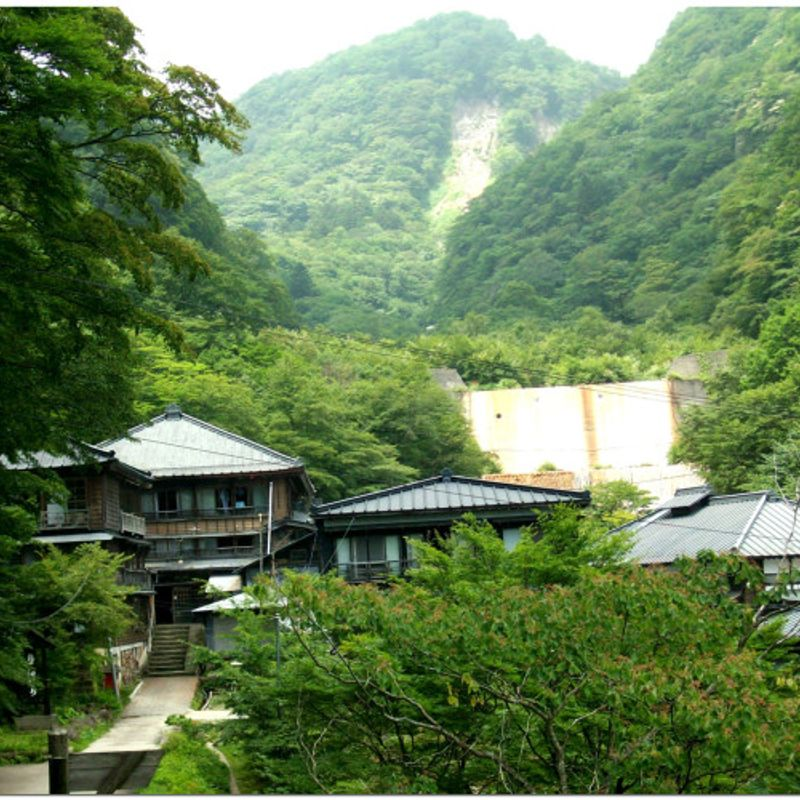 Want To Live In Rural Japan?  The Countryside Could Do With A Hand! photo