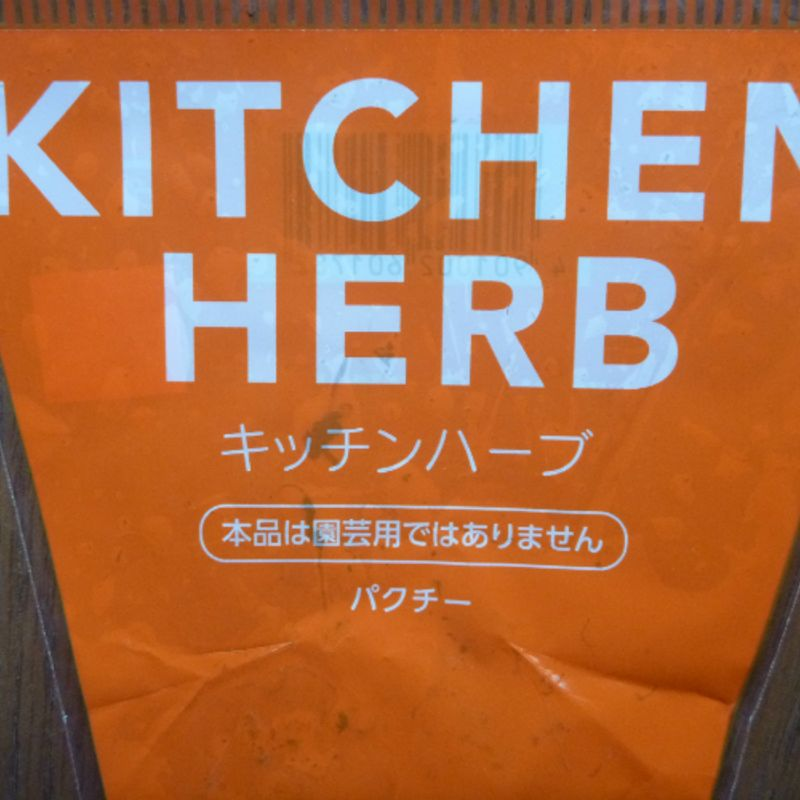 How to find coriander in Japan photo