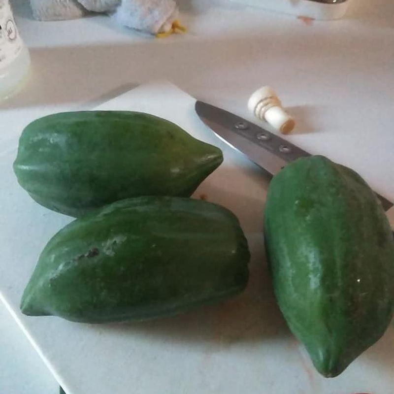 More random produce : Green papaya photo