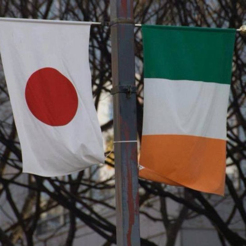 10 things you need to know about living in Japan… as an Irish person   photo