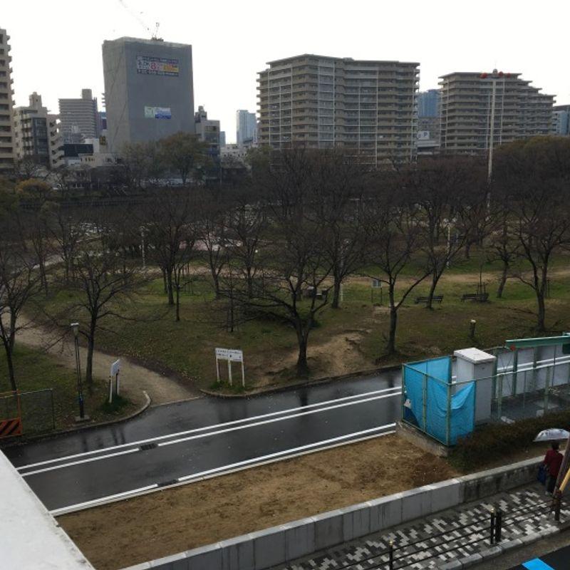 Bloom-boom: The Sakura of Kansai photo