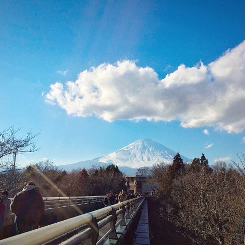 Tokyo to Gotemba Premium Outlets: How to travel and how much it costs photo