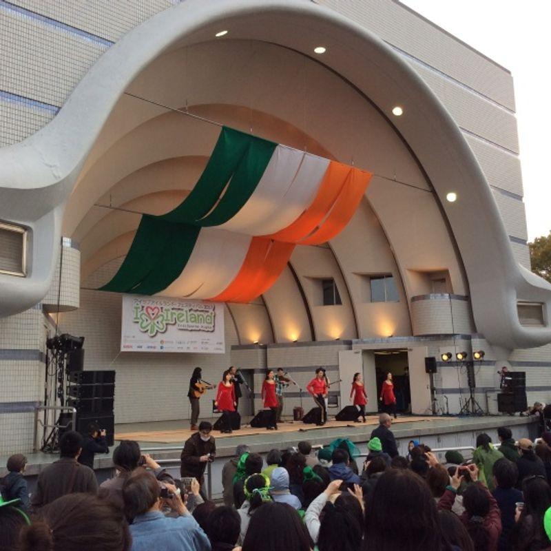 St Patrick's Day Parade and I love Ireland festival photo