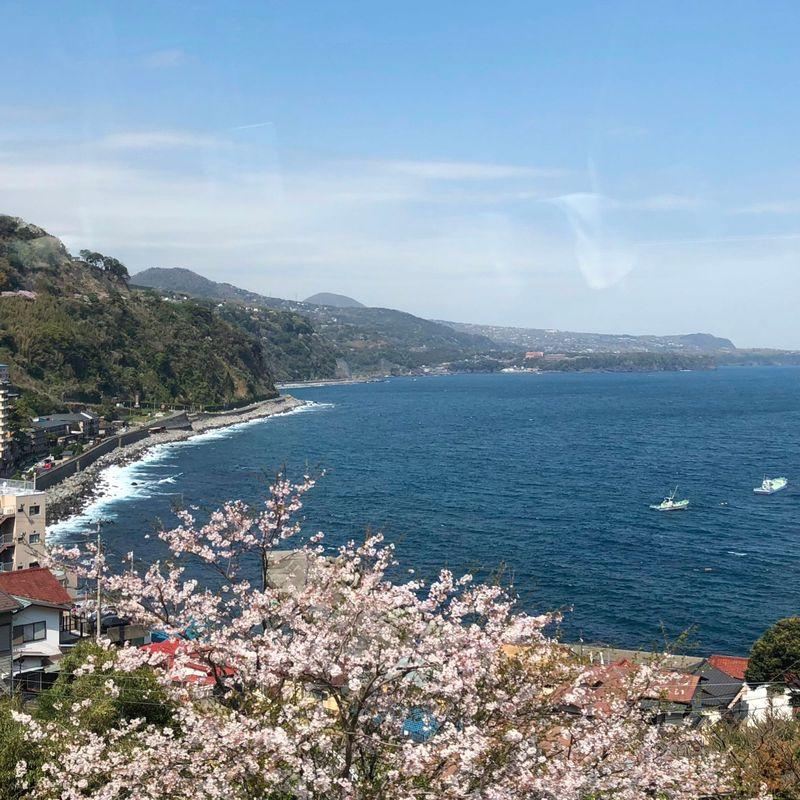 列車で東京から下田までいくらかかりますか? photo