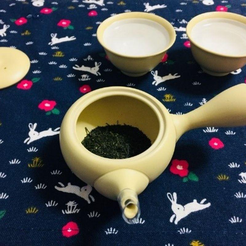 How to infuse Sencha. photo