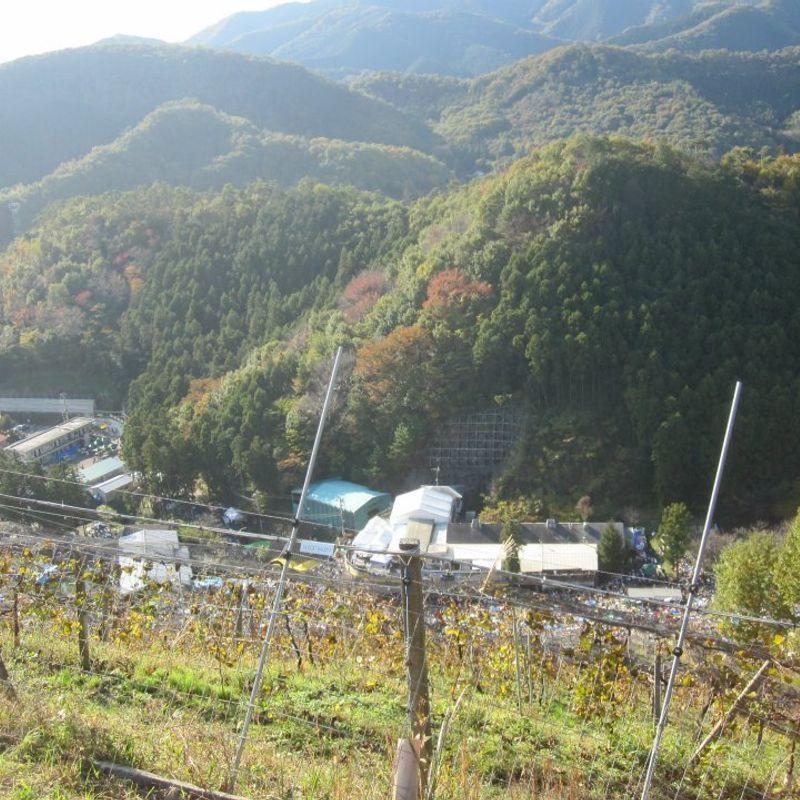 Ash木县足利市最好的地方 photo