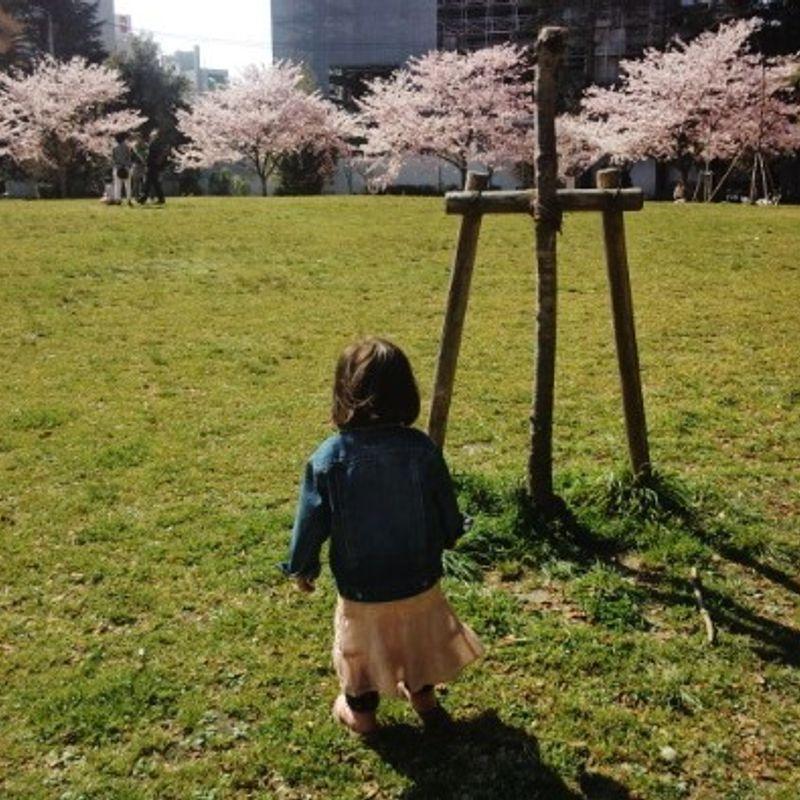 Jessica Tsuzuki's 2016 Review (Lots of Pictures!) photo