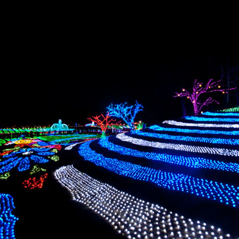Japan's biggest and best winter illuminations light up the 2018 - 2019 season photo