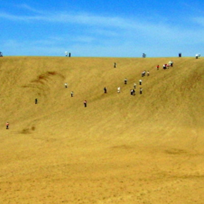 FREEBIE - Japan's Biggest Sand Dune photo