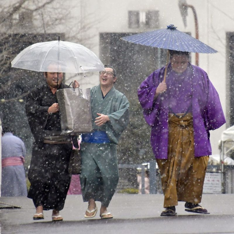 GALLERY: Tokyo blanketed in heaviest snow in 4 years photo
