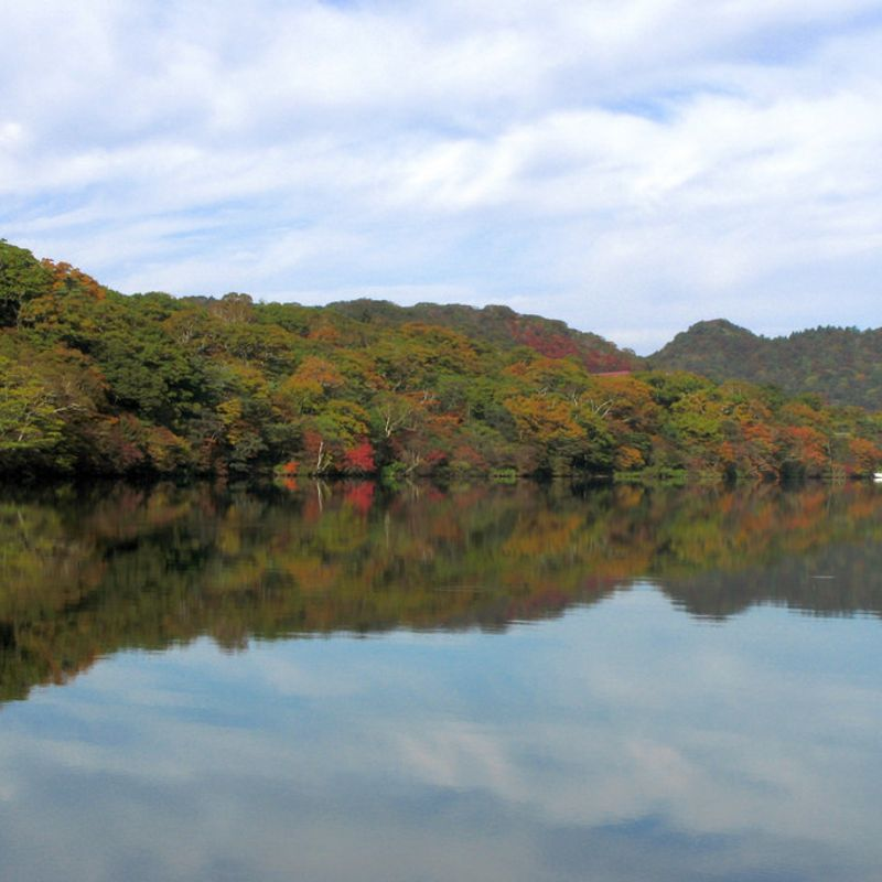 Best places to view autumn leaves around Tokyo, how much it costs to get to them photo