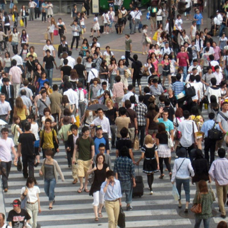 Survey Estimates 1 in 4 Japanese Have Considered Suicide photo