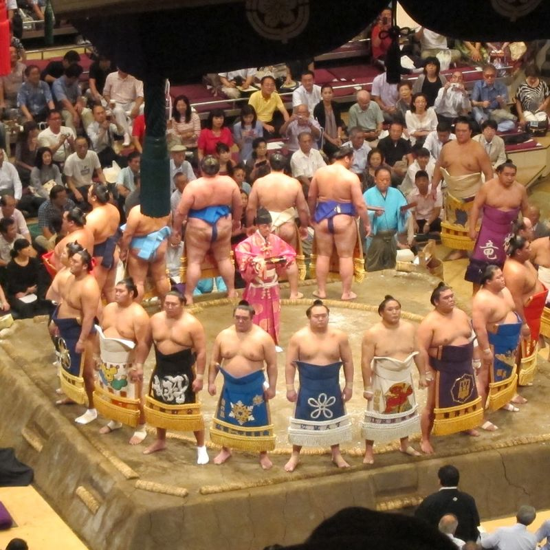 Experience a sumo game photo