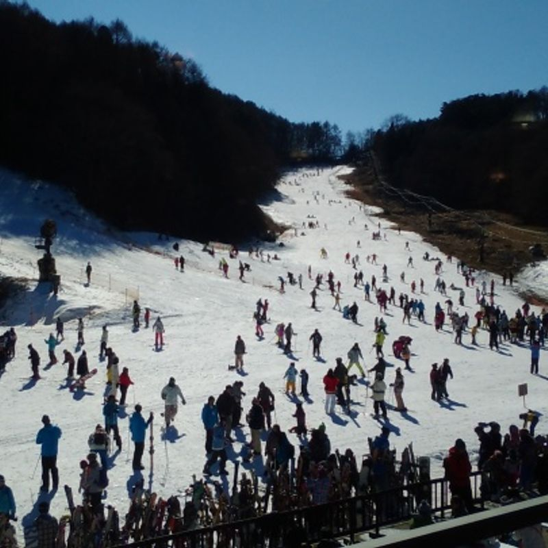 Family friendly snow resorts in NAGANO commutable from Tokyo photo